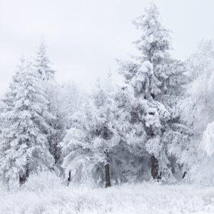 Winter Supplies